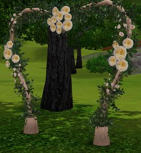Arco de Casamento Novo Começo