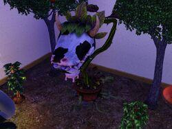 Planta Vaca em The Sims 3