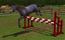 Cavalo saltando