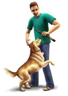 Um Sim e um Cão