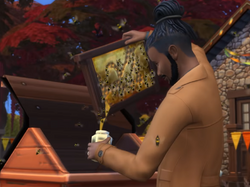 Apicultura (The Sims 4)