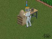 Apicultura Sims1