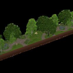 Parque Ribeiro