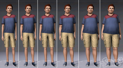 PesoTheSims3