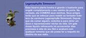 Laganaphyllis Simnovorii TS2 (descrição)