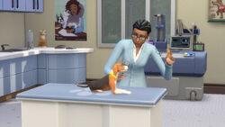The Sims 4 - Gatos e Cães (10)