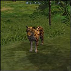 Onça em The Sims Histórias de Náufragos