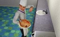 Chef (TS3)
