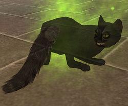 Gato Espectral 2