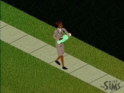 Assistente Social The Sims