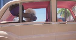 Nana & Eddie In The Car