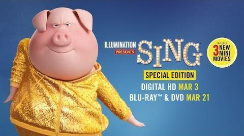 Sing Special Edition - Trailer - Own it on Digital HD 3 3 on Blu-ray & DVD 3 21