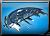 TradePortAdvent-button