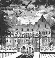 0017 - Das Haus der Angst - Spukhaus - Raben - Krähen