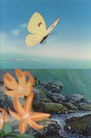 Episode 218 Plateau - Schmetterlinge - Miyama-shiro-chou