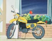 Cat's Eye 35 Suzuki