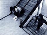 Ichiro Nakajima
