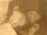 Noriko Kifune