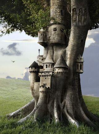 Tree Fortress