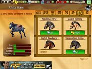 Horses founded in the shop