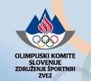 Reprezentacja Słowenii w skokach narciarskich