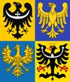 SilesiaCoAmin