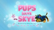 Pups Save Skye (Skye's Rescue)