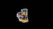 Police Skase