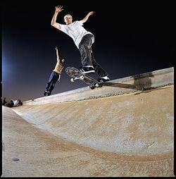 Marc Johnson5