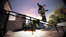Marc Johnson Skate 2