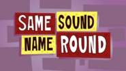 Skatoonyround-samesoundnameround