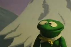 Skippy Shorts Frog