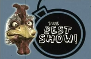 The Best Show Skippy Shorts