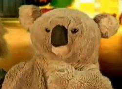 Skippy Shorts Kappy Koala