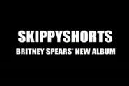 Skippy Shorts Britney Spears' New Album