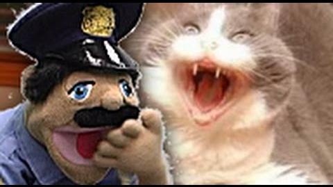 Dead Cat - Cop and Iggy