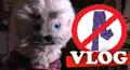 Vlog2