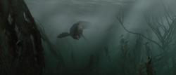 Piranhadon swims at screen