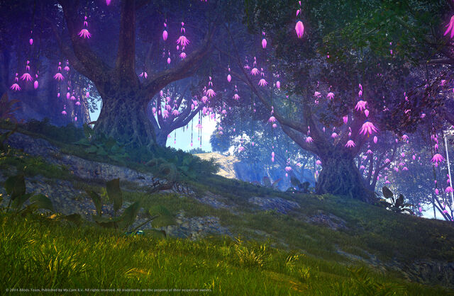 File:Purple Flower Trees.jpg