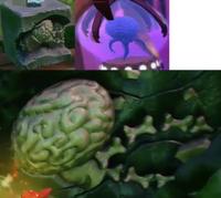 Brain creatures