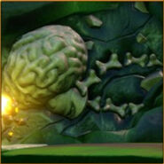 Brain Fossil