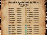 Player vs Player (PvP)