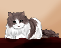 Ralg kitty