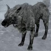 Skyrimicewolf