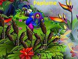 Paplume