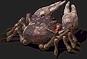 Fish-Crab