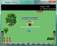 http://www.slayersonline.net/download/Interfaces/Araknos1
