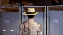 Panama Hat Back