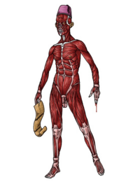 Skinless one