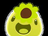 Sunflower Slime